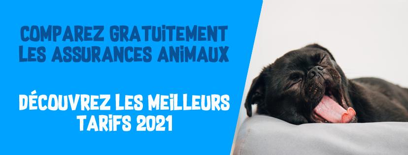 comparateur assurance animaux 2021